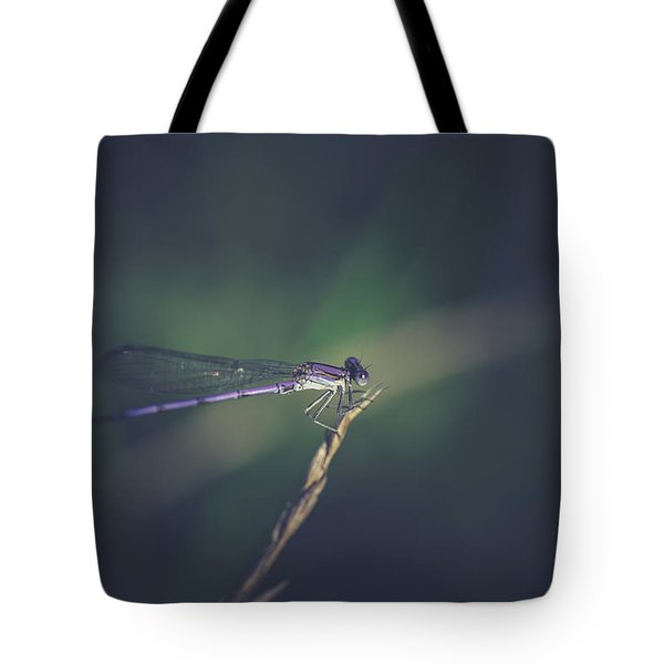 Tote Bag featuring the photograph Purple Damsel by Shane Holsclaw