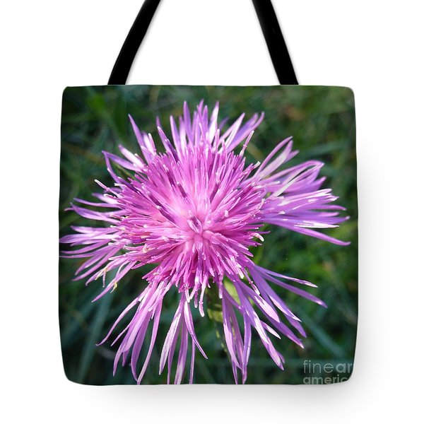 Purple Dandelions 3 Tote Bag by Jean Bernard Roussilhe