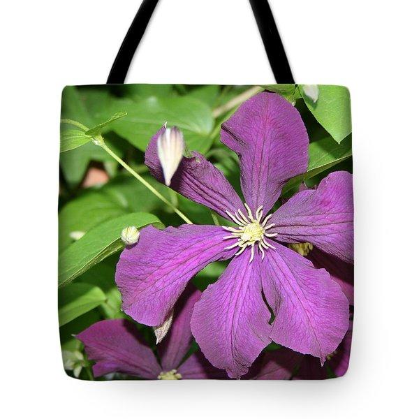 Purple Delite Tote Bag