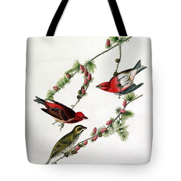 Purple Finch Tote Bag by John James Audubon