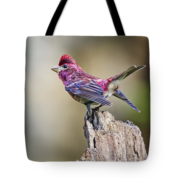 Purple Finch On Post Tote Bag