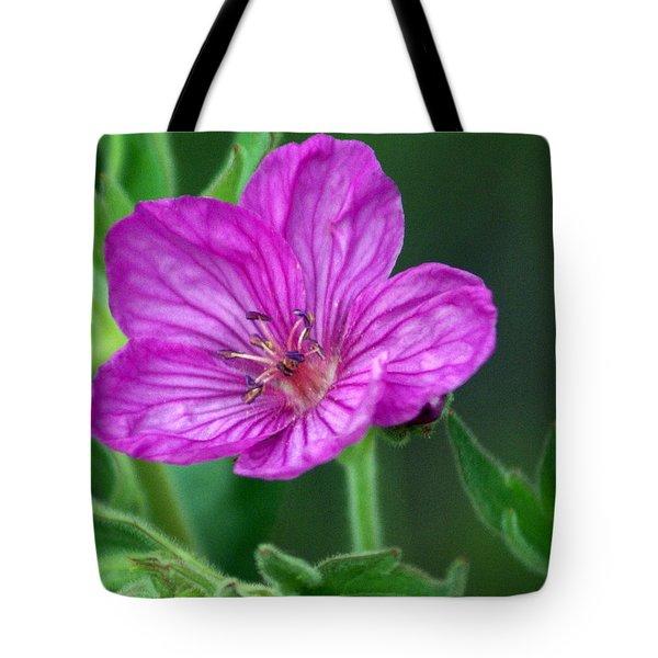 Purple Flower 2 Tote Bag by Marty Koch