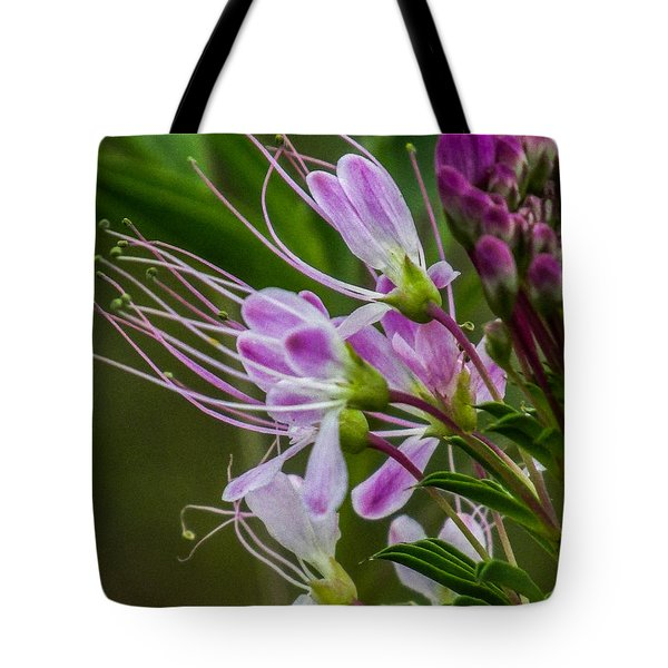 Purple Flower 6 Tote Bag