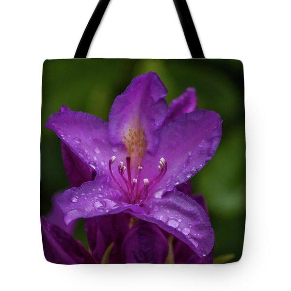 Purple Flower 7 Tote Bag by Timothy Latta
