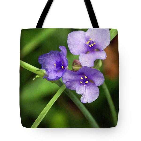 Purple Flower Tote Bag by Marty Koch