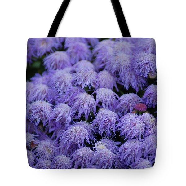 Tote Bag featuring the photograph Purple Flowers by Donna Bentley