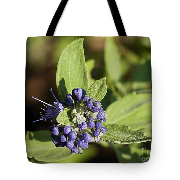 Tote Bag featuring the photograph Purple Flowers by Michael D Miller