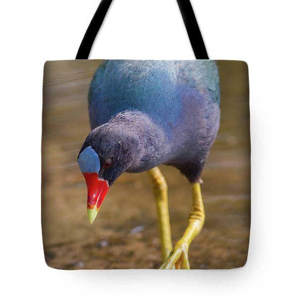Purple Gallinule Bigfoot Tote Bag