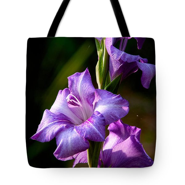 Purple Glads Tote Bag by Christopher Holmes