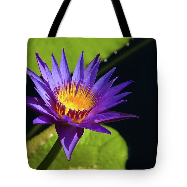Tote Bag featuring the photograph Purple Gold by Steve Stuller