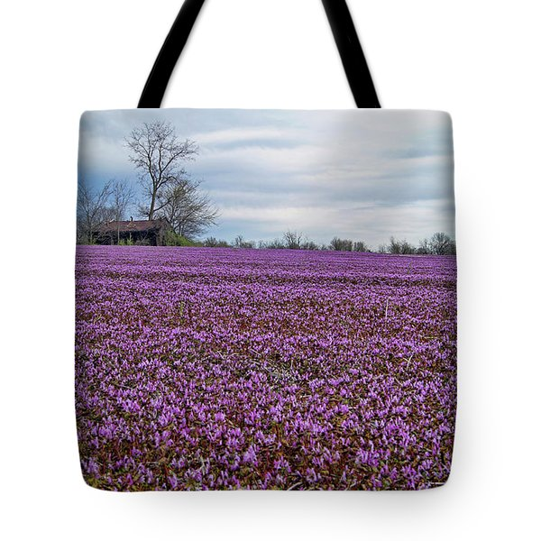 Tote Bag featuring the photograph Purple Haze by Cricket Hackmann