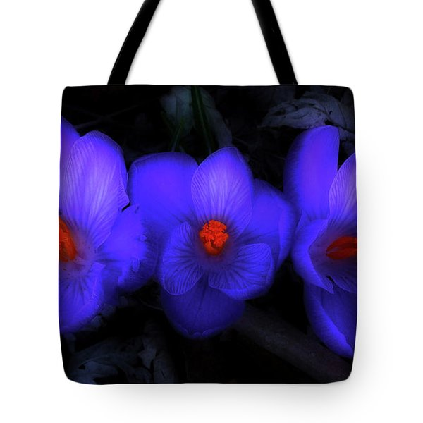 Beautiful Blue Purple Spring Crocus Blooms Tote Bag