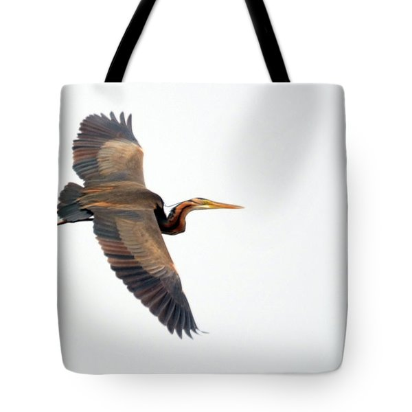 Purple Heron In Flight Tote Bag