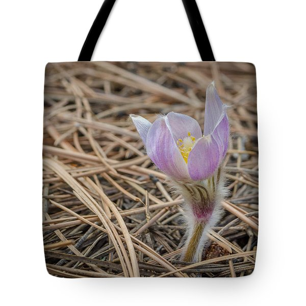 Purple In The Pine Tote Bag