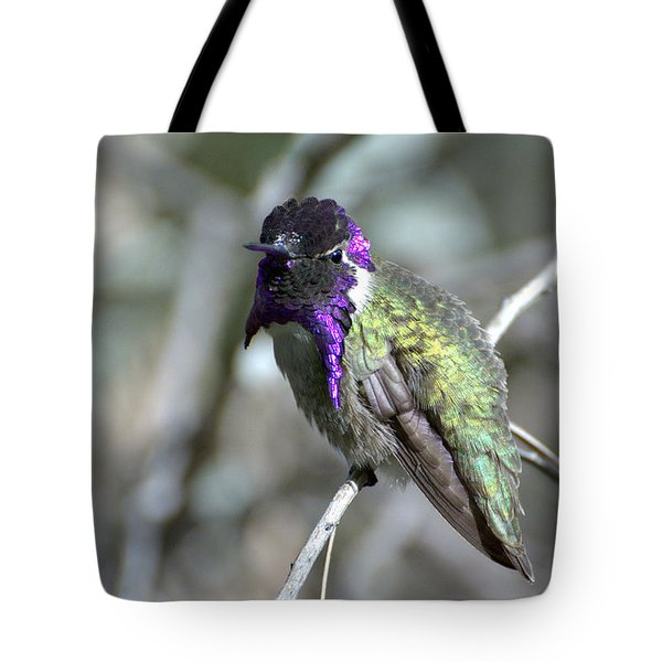 Tote Bag featuring the photograph Purple Iridescence  by Fraida Gutovich
