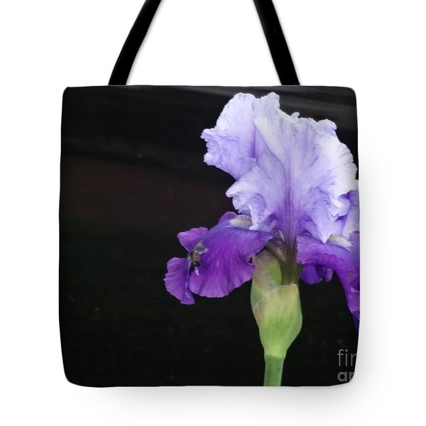 Tote Bag featuring the photograph Purple Iris by Rod Ismay