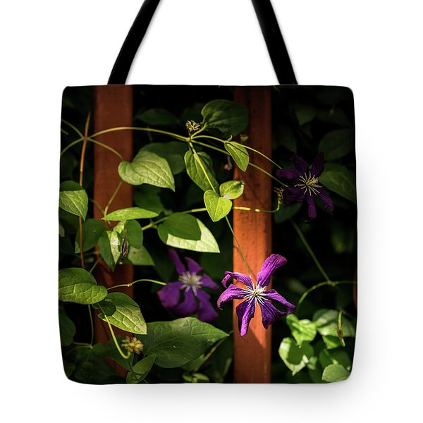 Tote Bag featuring the photograph Purple Jackmanii Clematis by Onyonet  Photo Studios