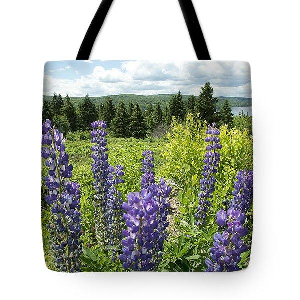 Purple Lupines Tote Bag by Paul Miller
