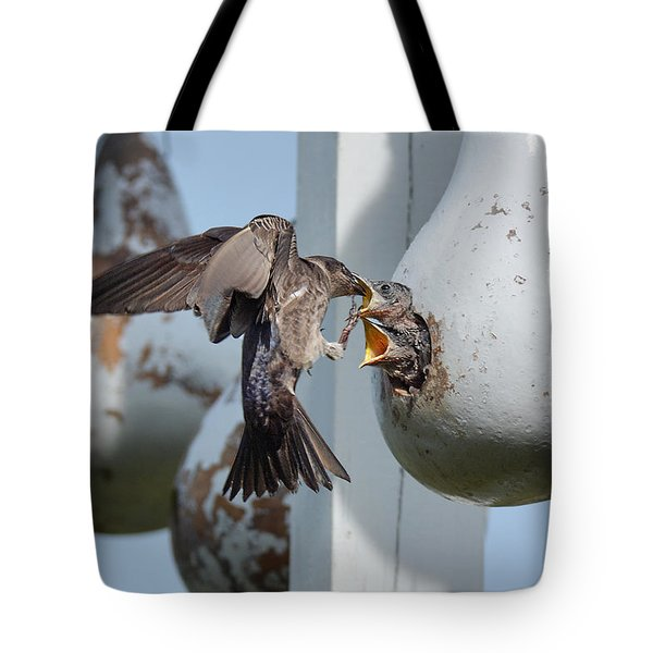 Purple Martin Feeding Chicks Tote Bag
