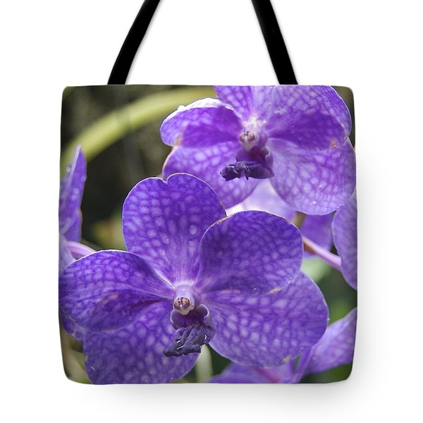 Purple Orchids Tote Bag by Michael Peychich