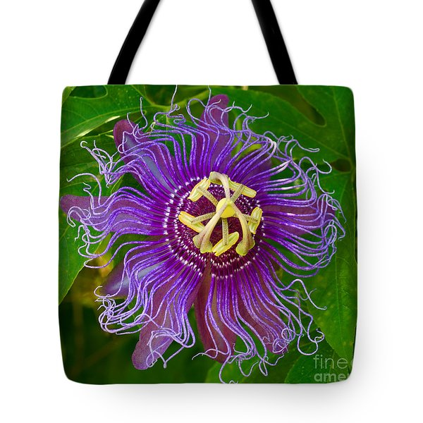 Purple Passion Tote Bag by Larry Nieland