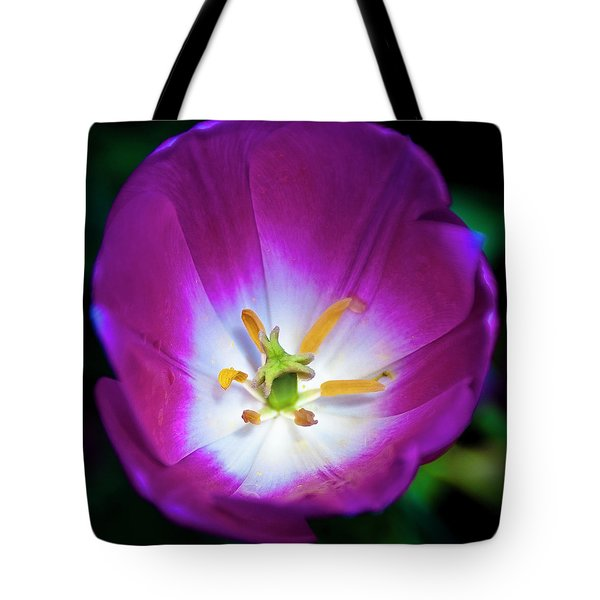 Purple Perfection Tote Bag by Tamyra Ayles