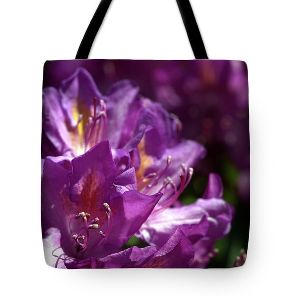 Tote Bag featuring the photograph Purple Rhododendron by Baggieoldboy