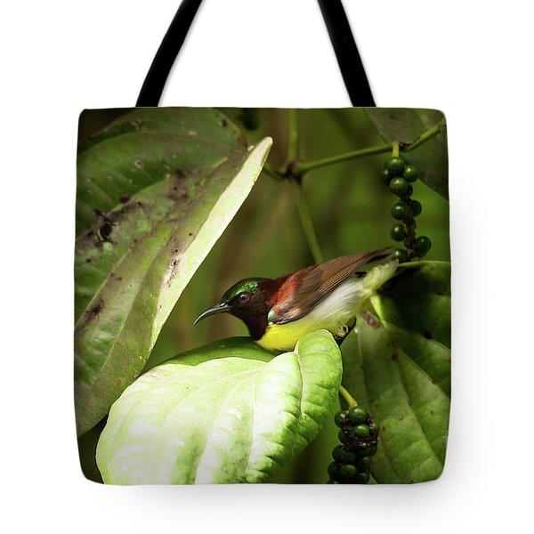 Purple-rumped Sunbird Tote Bag by Venura Herath