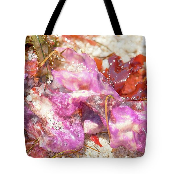 Purple Seaweed In Pacific Grove Tote Bag