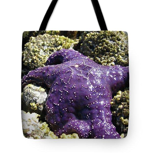 Purple Star Fish Tote Bag