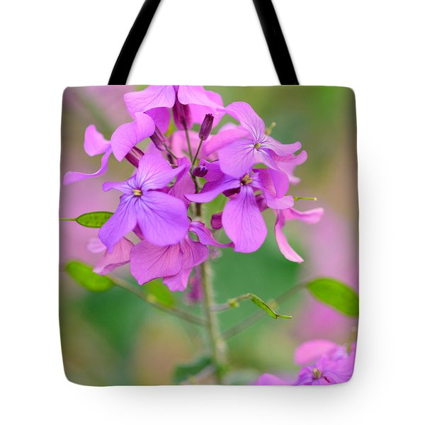 Purple Star Phlox Tote Bag