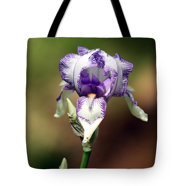 Tote Bag featuring the photograph Purple Striped Bearded Iris by Sheila Brown