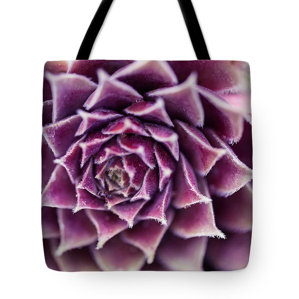 Purple Succulent Plant Blossom In Summer Tote Bag