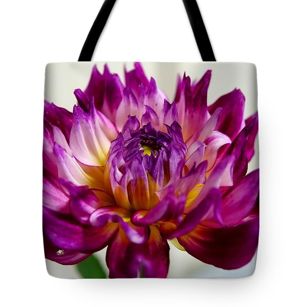 Tote Bag featuring the photograph Purple Sunset Flower 1 by Marianne Dow