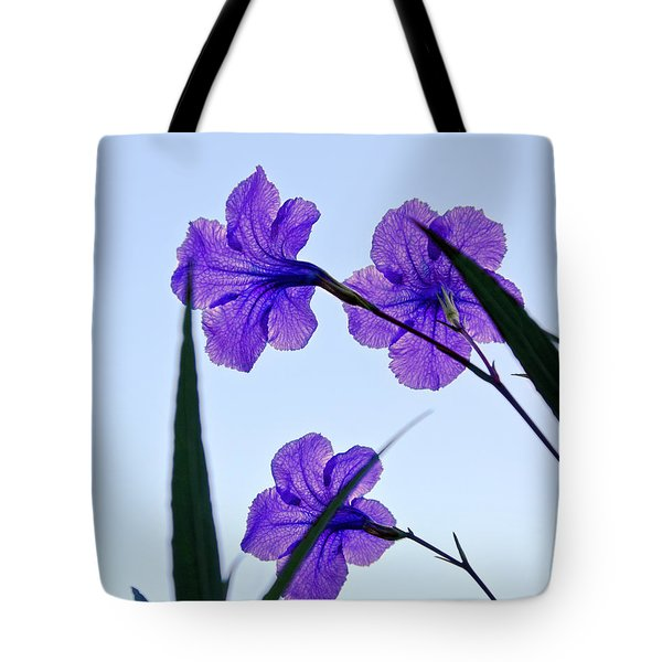 Purple Trio Tote Bag by Christopher Holmes