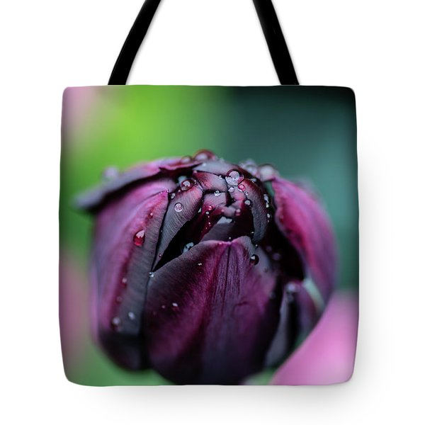 Purple Tulip Tote Bag by Martina Fagan