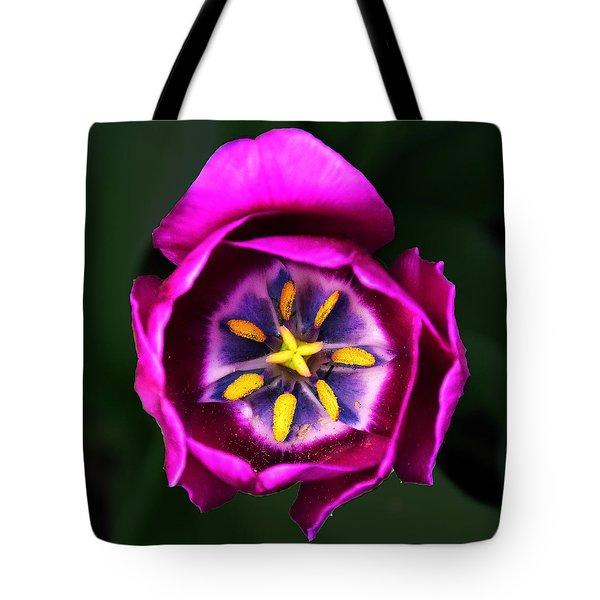 Purple Tulip Tote Bag by Robert Clayton