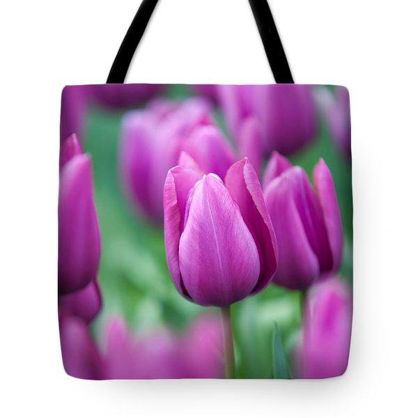Purple Tulips Of Keukenhof Tote Bag