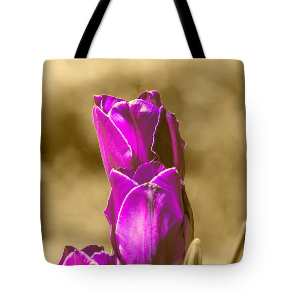 Purple Tulips Sepia Background Tote Bag