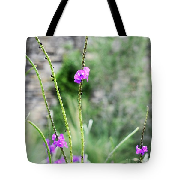 Purple Vebena Tote Bag