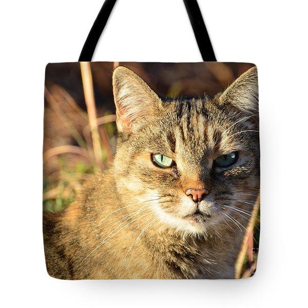 Purr-fect Kitty Cat Friend Tote Bag