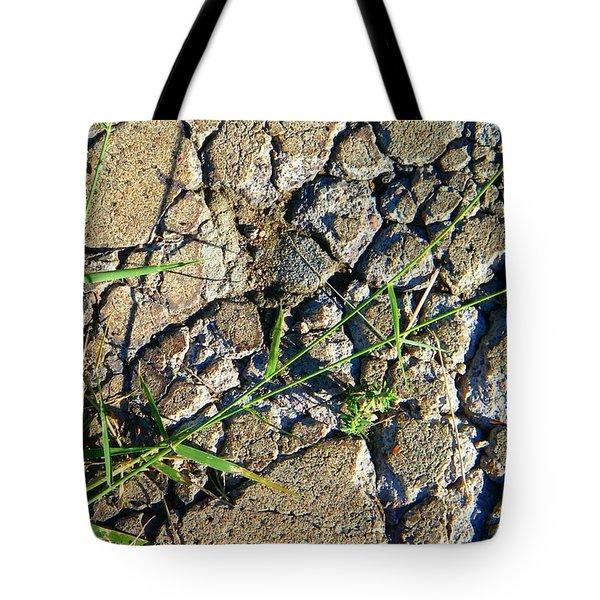 Pushing Through Concrete Tote Bag by Lenore Senior