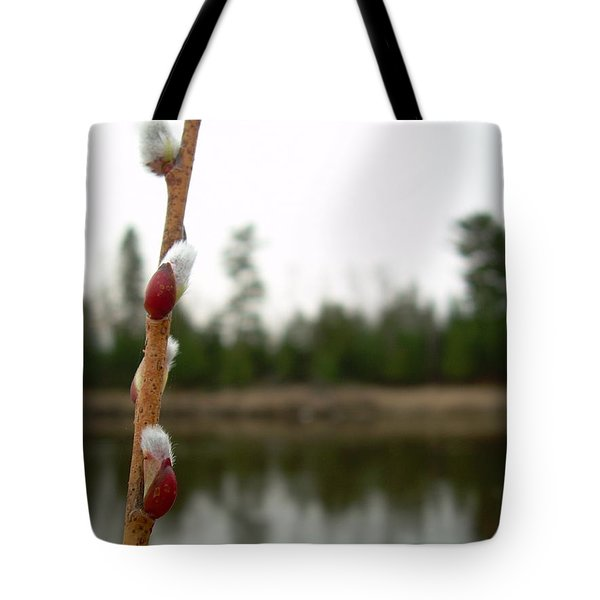 Tote Bag featuring the photograph Pussy Willow Buds by Kent Lorentzen