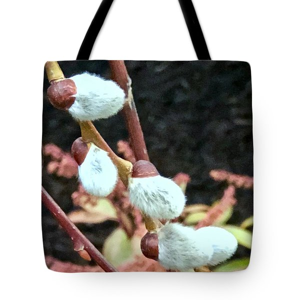 Pussywillow Tote Bag
