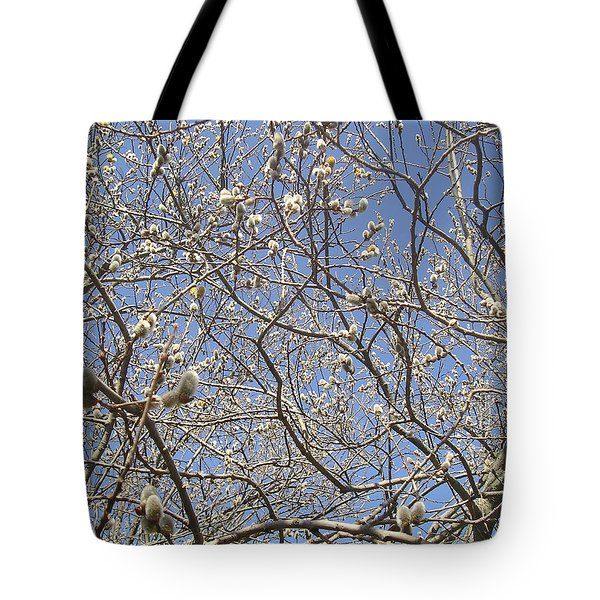 Pussywillows Bursting To Life Tote Bag