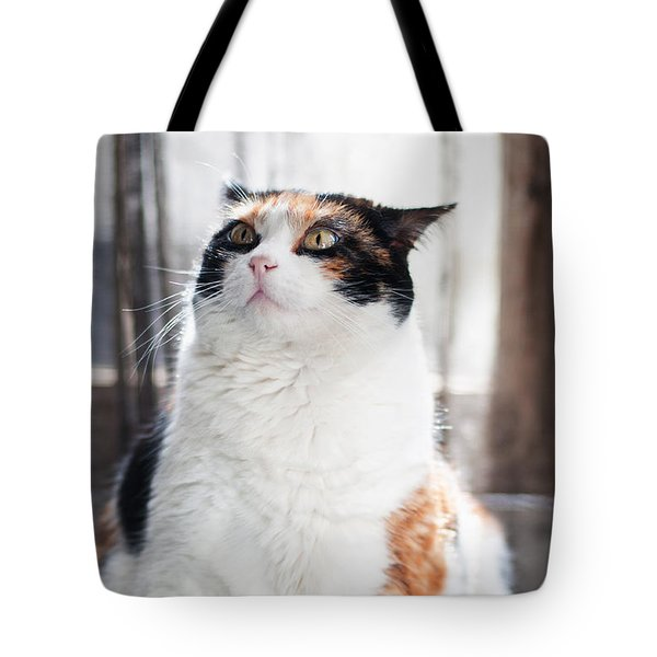 Tote Bag featuring the photograph Puzzled by Laura Melis