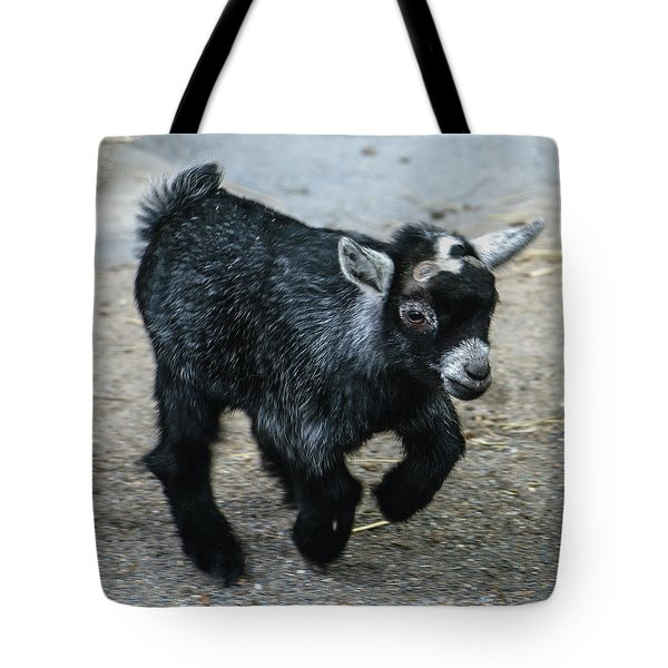Pygmy Goat Kid Tote Bag