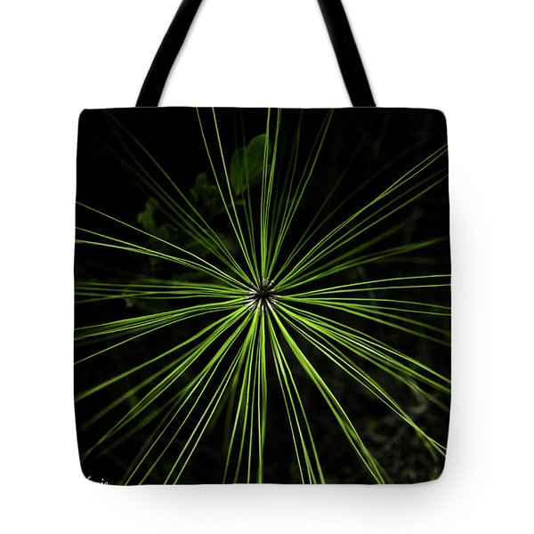 Pyrotechnics Or Pine Needles Tote Bag by Stefanie Silva
