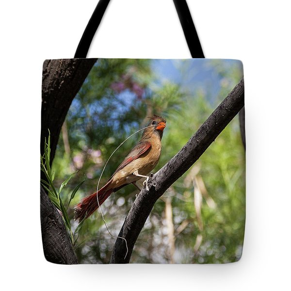 Pyrrhuloxia At Work Tote Bag