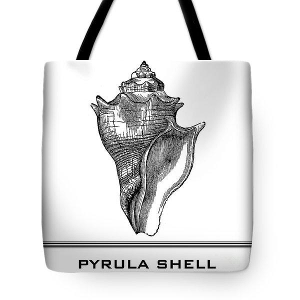 Pyrula Shell Tote Bag